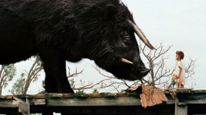 Beasts of the Southern Wild - 6