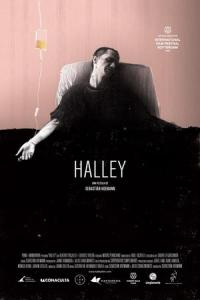 halley-2012